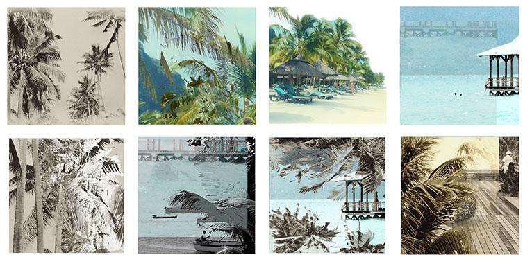 Grafic Palmier Voeux d'Artistes Bardy
